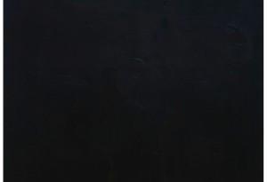 Rolf Rose, 220 x 200,5 cm, Graphit und Ölfarbe auf Sperrholz